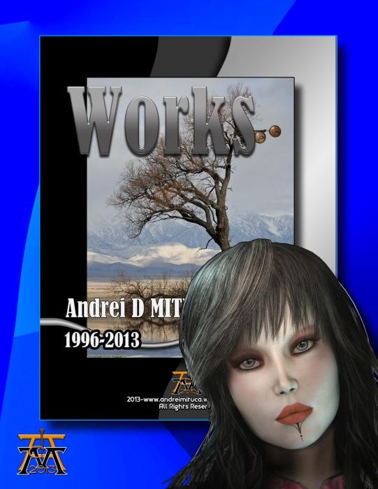 Lucrarile lui ANDREI_13